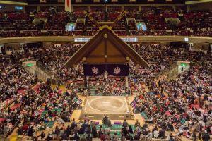 Torneo de Sumo